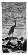 Heron On The Rocks Beach Towel by William Selander