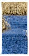 Heron Preening Beach Towel