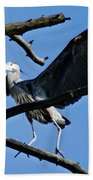 Heron Spreads Wings Beach Towel