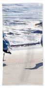 Herring Gulls On The Beach Beach Towel