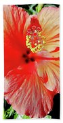 Hibiscus - Dew Covered - Beauty Beach Towel