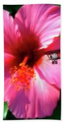 Hibiscus Fly-by Beach Towel