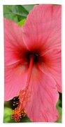 Hibiscus Front Beach Towel