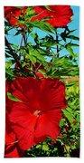 Hibiscus In Naptown Beach Towel