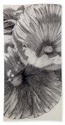 Hibiscus Sketch Beach Towel