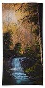 Hidden Brook Beach Towel by C Steele