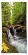 Hidden Falls At Rock Creek Beach Towel