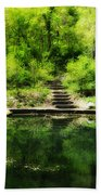 Hidden Pond At Schuylkill Valley Nature Center Beach Towel by Bill Cannon