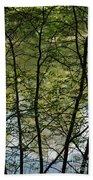 Hidden Pond Natural Fence Beach Towel