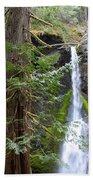 Hidden Rainforest Treasure Beach Towel
