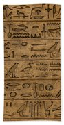 Hieroglyph Beach Towel
