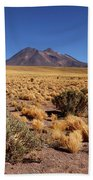 High Altitude Puna Grasslands And Miniques Volcano Chile Beach Towel