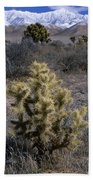 High Desert Country Beach Towel