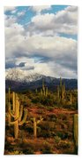 High Desert Snow Beach Towel