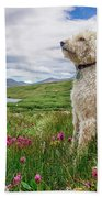 High Meadow With Eyes To The Sky Beach Towel