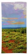 High Mesa Path Beach Towel