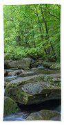 High Shoals Falls Trail In South Mountain Panorama Beach Towel by Ranjay Mitra