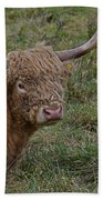 Highland Cattle Beach Towel