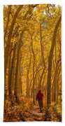 Hiking In Fall Aspens Beach Towel