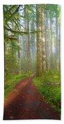 Hiking Trail In Washington State Park Beach Towel