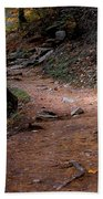 Hiking Trail To Abrams Falls Beach Towel by DigiArt Diaries by Vicky B Fuller