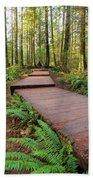 Hiking Trail Wood Walkway In Lynn Canyon Park Beach Sheet