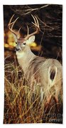 Hill Country Beach Towel