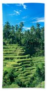 Hillside In Indonesia Beach Towel