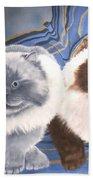 Himalayan Cats  Beach Towel