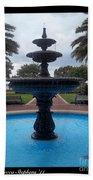 Historical Saint Marys Water Fountain Beach Towel