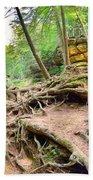 Hocking Hills Ohio Old Man's Gorge Trail Beach Towel