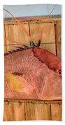 Hog Fish 02 Beach Towel