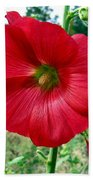 Hollyhock Hill Beach Towel