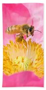 Honey Bee Collecting Pollen Beach Towel