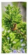 Honey Bee On Bush Beach Towel