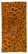 Honey Bee On Sunflower Beach Towel