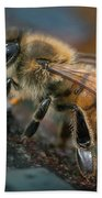 Honey Bee Beach Sheet