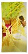 Honey Bees And Magnolia Beach Towel