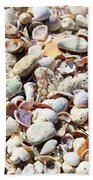 Honeymoon Island Shells Beach Towel