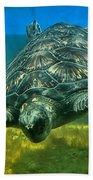 Honu Beach Towel