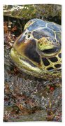 Honu In The Water Beach Towel