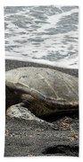 Honu Sleeping On The Shoreline At Punalu'u Beach Towel