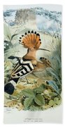 Hoopoe Beach Towel by Edouard Travies