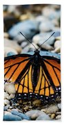 Hope Of The Monarch Butterfly Beach Towel