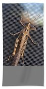 Hopper Beach Towel