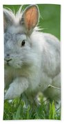 Hopping Rabbit Beach Towel