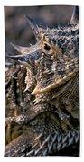 Horn Toad Beach Towel