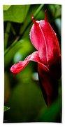 Horned Blossom Beach Sheet