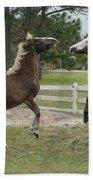 Horse Aerobics Beach Towel