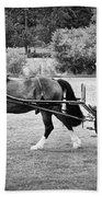 Horse And Cart Beach Towel